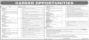 Sindh Investment Department NTS Jobs 2020 Online Application Form